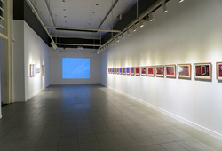 """Social Organism"" Installation View #1"