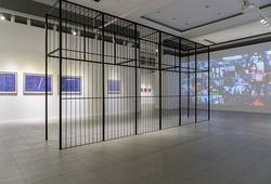 """Social Organism"" Installation View #2"