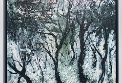 Hutan Berkapur