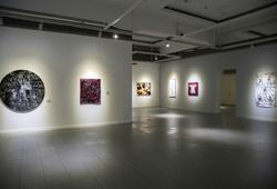 """Natura Hominis"" Installation View #1"