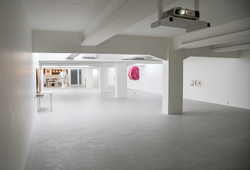 'INHERITED ORDER' INSTALLATION VIEW #1