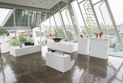 """Sela Sawala"" Installation View #4"