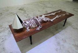 Berbaring untuk Menjulang (Detail View #1)