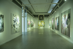 """NOOR"" Installation View #3"