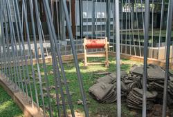 Jardin Zoologique D'acclimatation (Detail View #1)