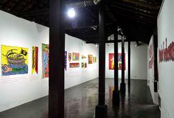 Tan Hana Installation View #3