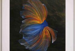 Ekor Ikan