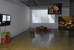 Reconstructed Biotope Installation View