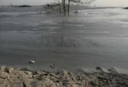 Mud Max 1