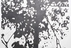 Shadow #10