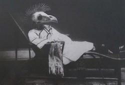 Bird Head No 3