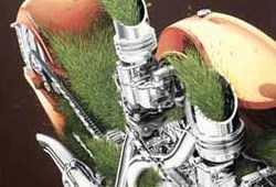 Green Torque