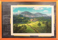 Rereading Landscape, Mooi Indie #1