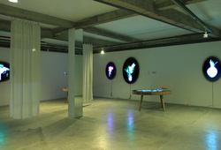 Ovalova Installation View #3