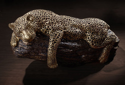 Leopard #3